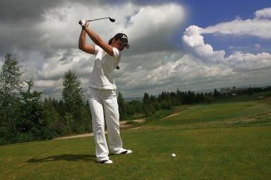 birdies golf